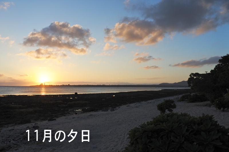 11月の夕日